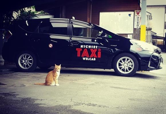 【未経験OK!選べるシフトで働きやすい!】タクシー乗務員【昼パート】 イメージ1